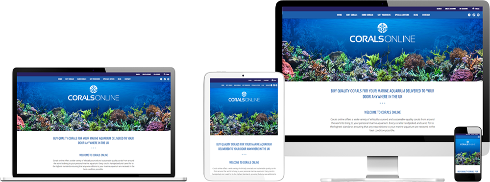 Website case study for online Corals retailer Website Snap