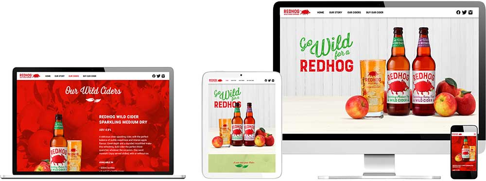Website case study for new Cider brand Website Snap
